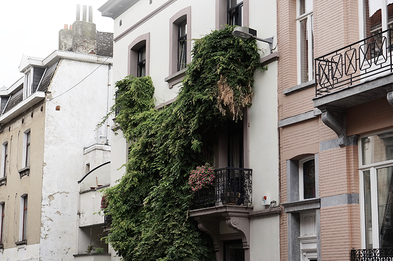 citytrip brussels architecture