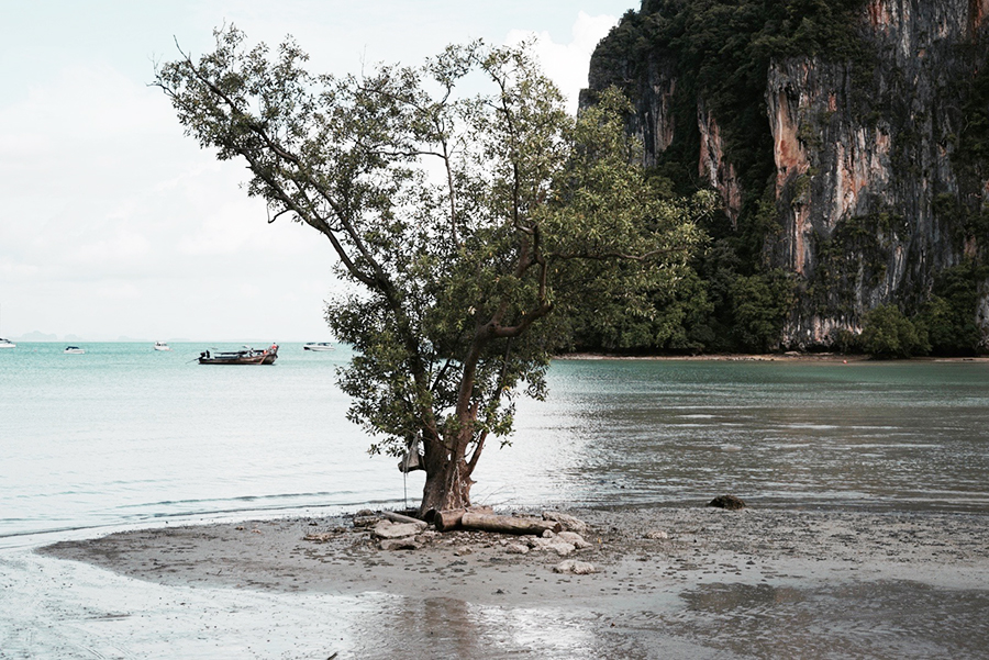 railay-beach-nature