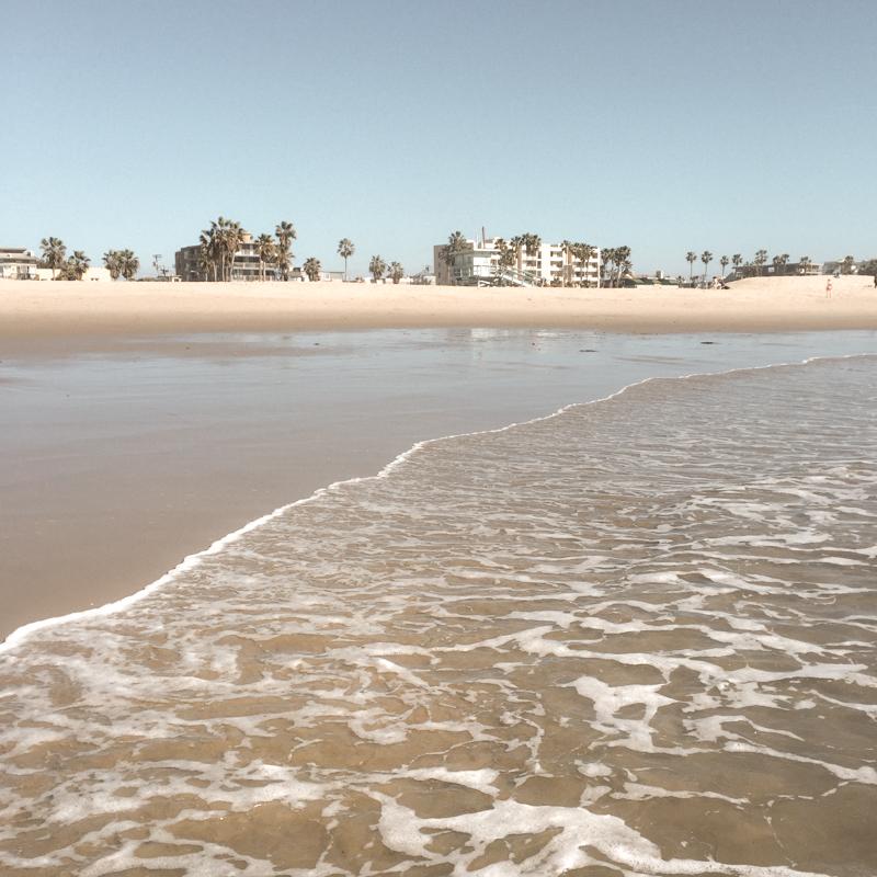 venice beach snapshot